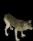 wolf-fatty.png