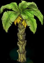banana-palm-tree-1.png