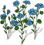 flax-plant-adult.png